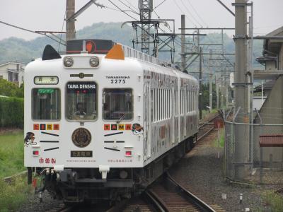 走行中のたま電車