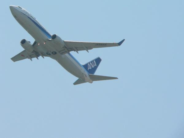 飛行機13
