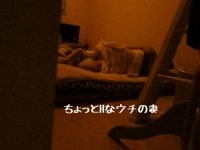 i-IMG_0309.jpg