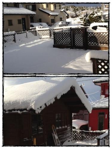 記録的大雪20140209