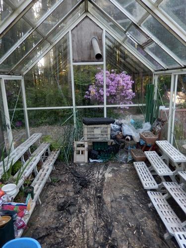 2014.5.1 春の庭その2 014