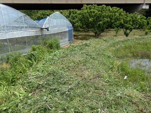 2014.5.24 春の草刈 004 (2)