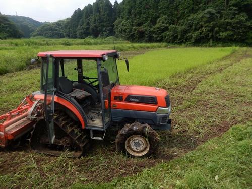 2014.7.21 休耕田の耕作 002