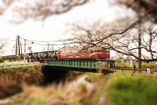 140330桜1152レ (57)のコピー