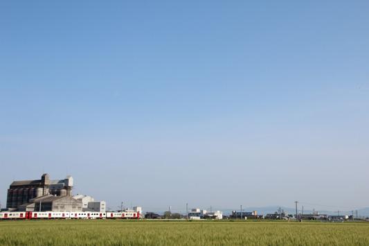 140504瀬高麦畑 (9)のコピー