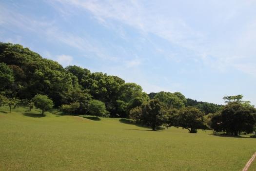 140506朝日山公園 (150)のコピー
