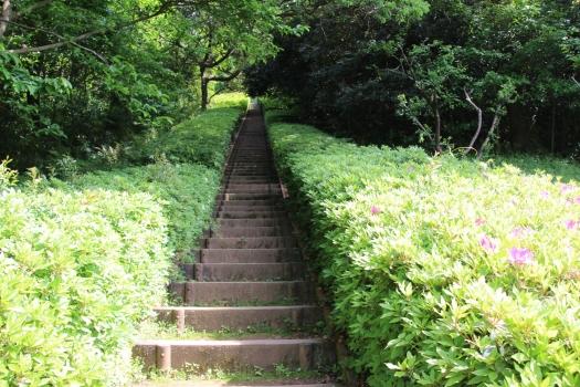 140506朝日山公園 (152)のコピー