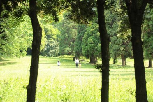 140506朝日山公園 (146)のコピー