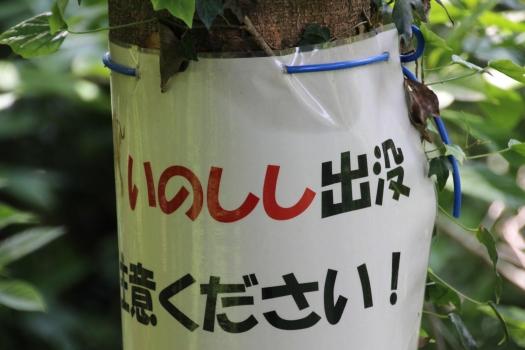 140506朝日山公園 (155)のコピー