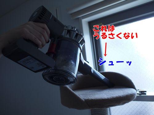 dyrepo5_text.jpg