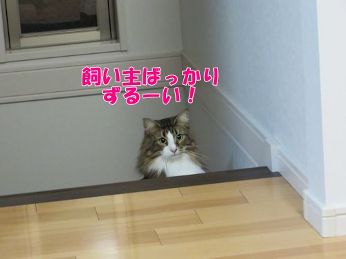 harukari6_text.jpg