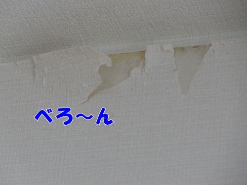 kabehakai3_text.jpg