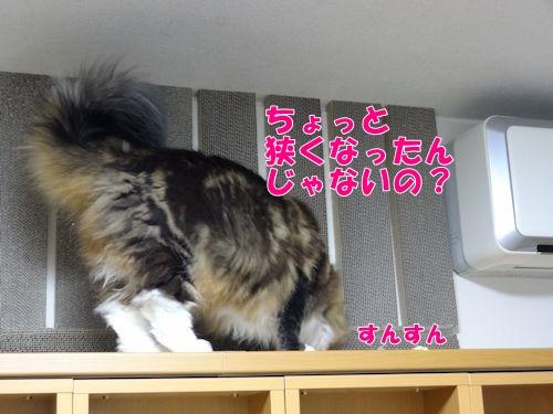 kabehakai7_text.jpg