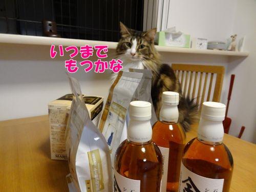 kakekomu2_text.jpg