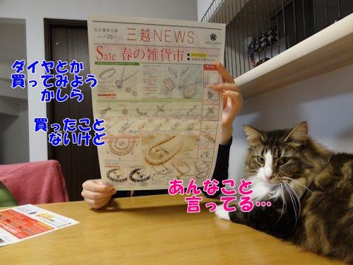kakekomu5_text.jpg