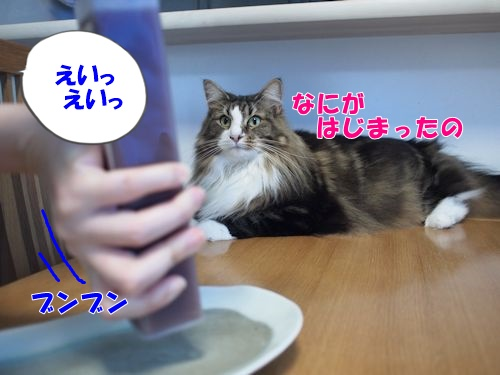 mizuyoukan3_text.jpg