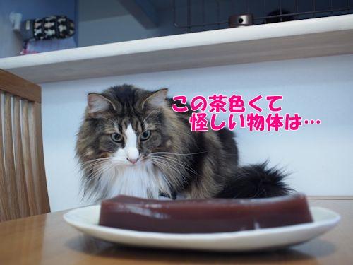 mizuyoukan6_text.jpg