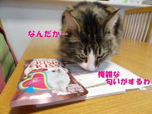 nanasuko3_text.jpg