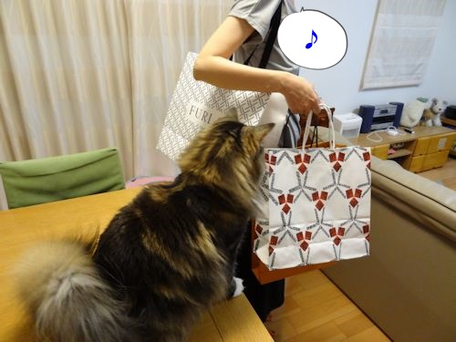 okaimonoha5_text.jpg