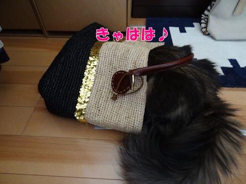 okatazuke5_text.jpg