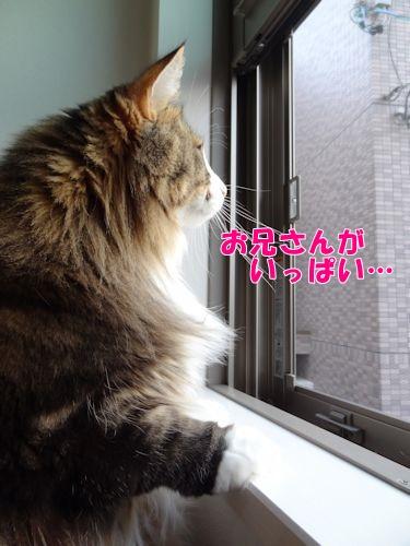 souon7_text.jpg