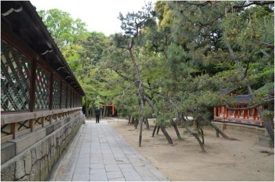 御香宮神社260429_06