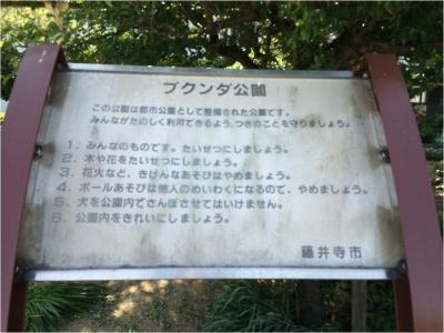 藤井寺260510_05_07