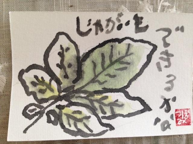 写真 2 (1)