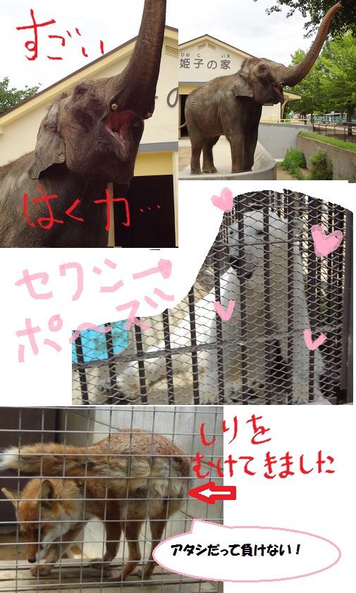 姫路レポ2-03