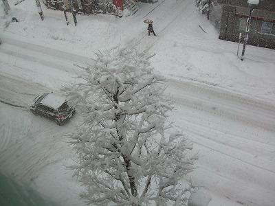 s-雪の花①