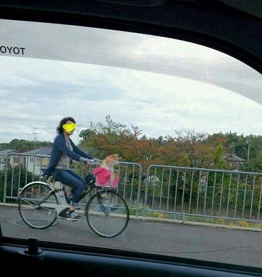 s-自転車に乗る