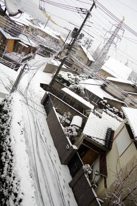 20140208積雪2
