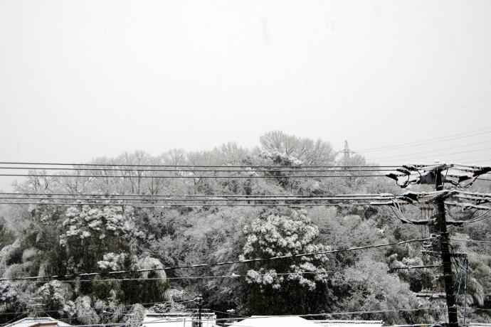 20140208積雪4
