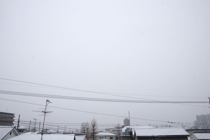 20140214積雪1