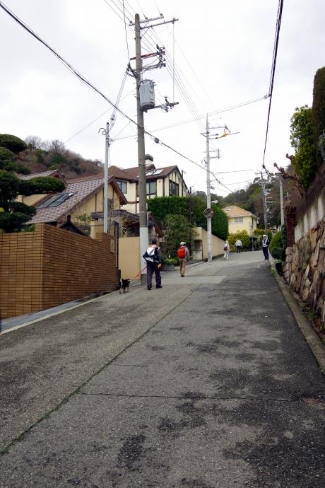 20140327六甲山14