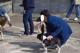 3-31パン父&ふる太