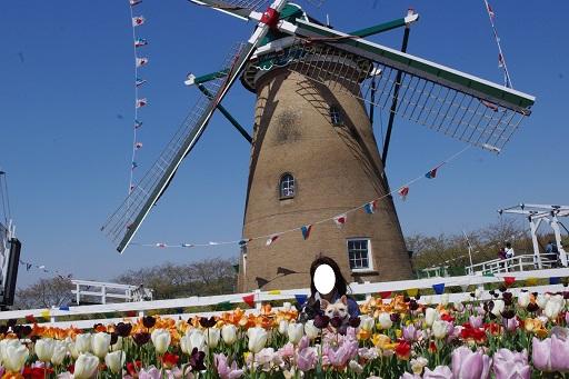 4-18風車フルウタママ