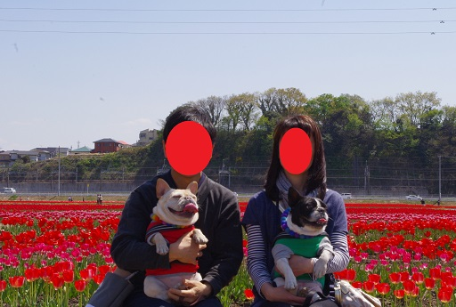 4-18家族ちゅーりっぷ