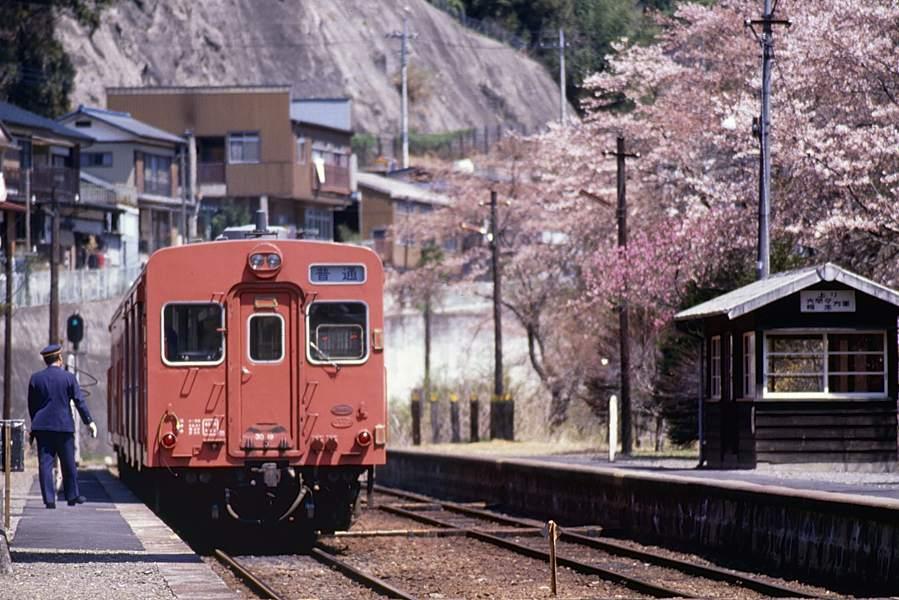JRashiomizunuma1198804b.jpg