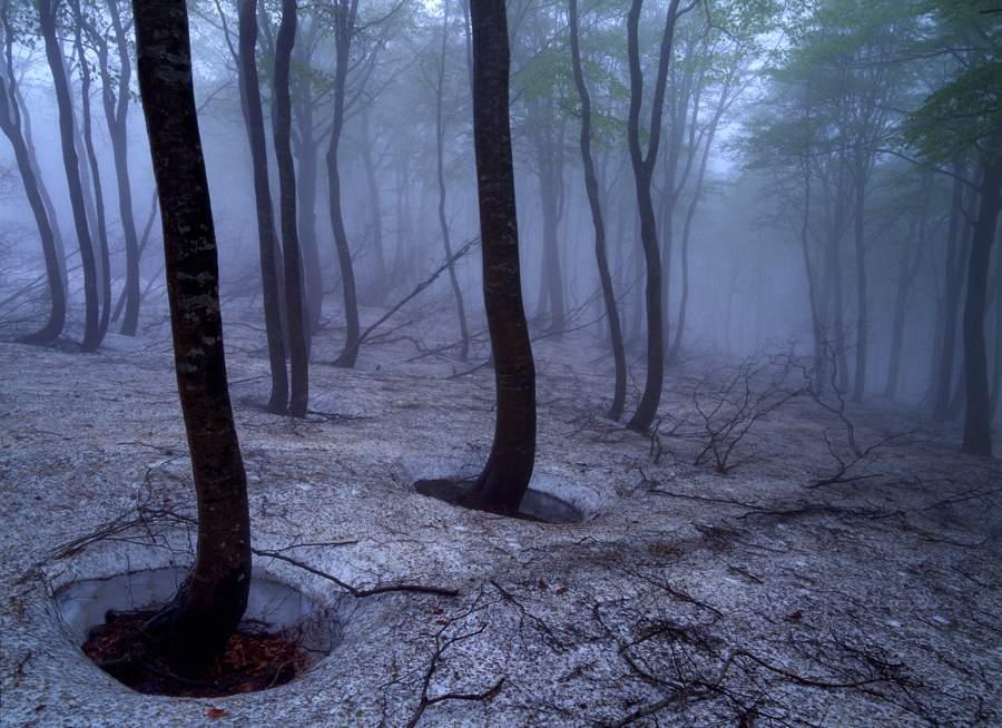 nabekurayama2002051b.jpg