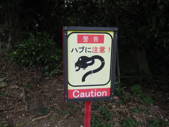 厩務員クラブ沖縄 083