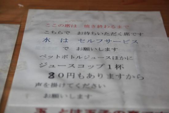 芝桜 058