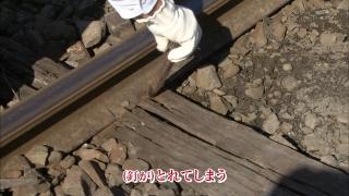 telementary2014_jrhokkaido_13.jpg