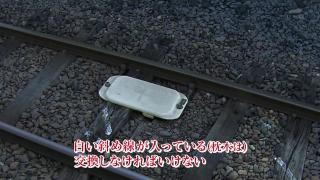 telementary2014_jrhokkaido_14.jpg