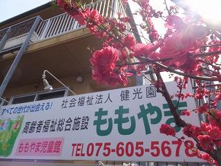 ももやま・京都府小中学校校長会・御香宮260331 003