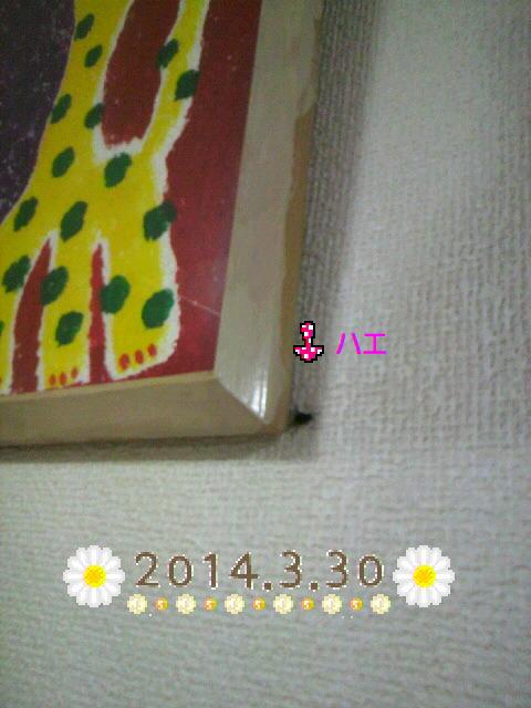 P1002077.jpg