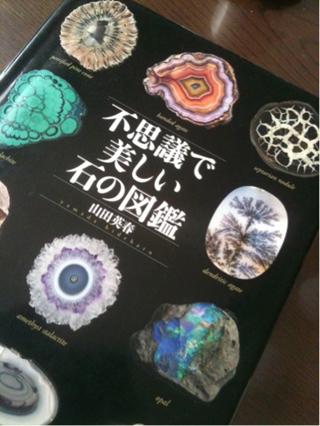20140604不思議で美しい石の図鑑320x