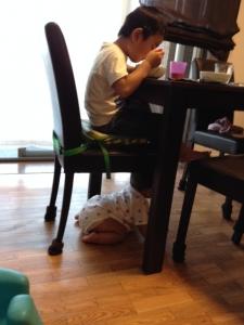 椅子の下がお気に入り