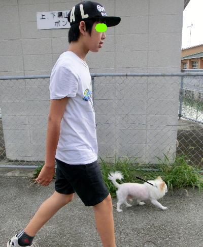 140813-甥1号銀ちゃんと散歩-1