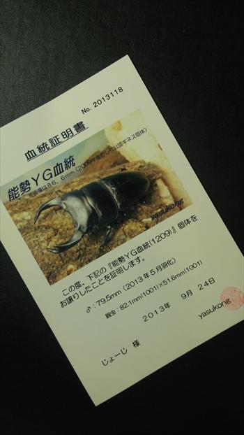 能勢YG♂79.5